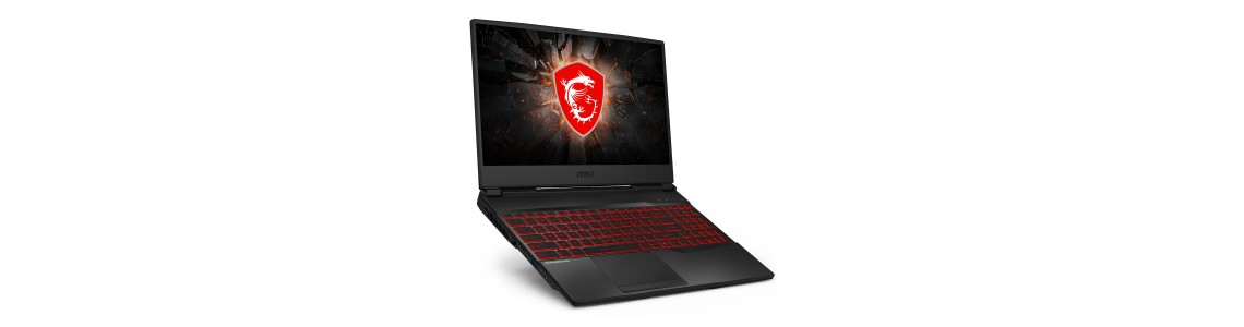 Portable MSI Gaming